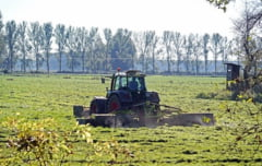 MAE: 16 romani care lucreaza la o ferma din landul Renania - confirmati ca infectati cu noul coronavirus