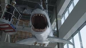 """Macheta rechinului din filmul-cult """"Falci"""" se afla la viitorul muzeu al Academiei americane de film"""