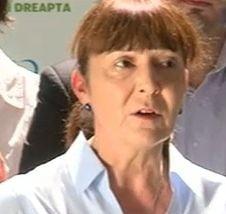 Macovei: USL s-a speriat de condamnarea lui Nastase, vor sa opreasca dosarele