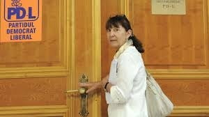"""Macovei vrea alegeri primare si motiune """"reformista"""" - Corespondenta Bruxelles"""
