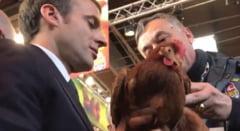 Macron adopta o gaina care sa-i faca oua proaspete la Elysee