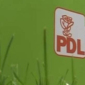 Mai exista PDL? (Opinii)