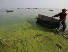 Malurile unui lac din China au cedat