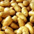 Mancam tot mai multi cartofi din import - crestere de 2,4 ori in 2013