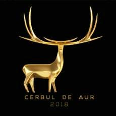Marele Trofeu Cerbul de Aur 2018 a fost castigat de o interpreta albaneza de 17 ani
