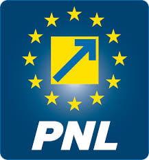 Marian Petrache: Frunzaverde isi pierde toate functiile din PNL, dar ramane in fruntea CJ