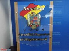 Mariana Rarinca - victima a erorii sau instrument al unei tentative de puci in Justitie?