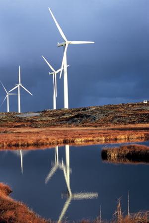 Marile companii ar putea renunta la investitiile in energia eoliana, in Romania