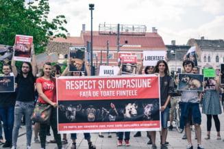 Mars al veganilor la Cluj-Napoca: Respect si compasiune fata de toate fiintele