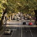 Masura radicala propusa de OMS: limitarea vitezei de circulatie la 30 km/h in interiorul oraselor