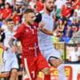 Meci greu pentru cocosii artagosi! FC Viitorul - FC Botosani se disputa astazi de la ora 21.00.