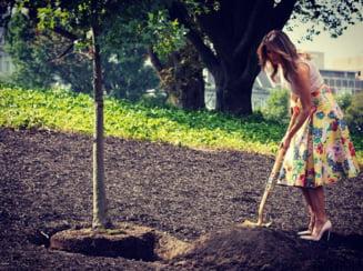 Melania Trump s-a dus sa planteze copaci intr-o fusta de mii de dolari si tocuri cui (Video)