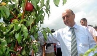 Merele otravite ale lui Basescu (Opinii)