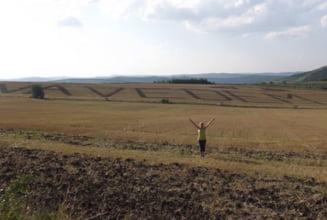 Mesajele anti-PSD trasate cu tractorul pe miriste se extind: #Va vedem din Samboleni! (Foto si Video)