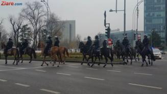 Mesajul Jandarmeriei inainte de protestul diasporei: Nu vom accepta niciun fel de actiuni violente