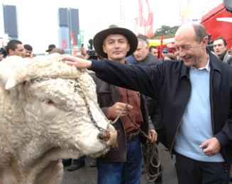 Mic tratat de daramat Basescu