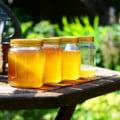 Mierea de Manuka - 7 beneficii pe care ar trebui sa le cunosti