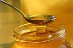 Mierea de albine monoflora si puterile ei tamaduitoare