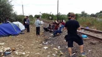 Migrantii isi instaleaza corturi in Serbia, asteptand un moment prielnic pentru a se strecura in statele UE