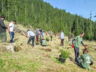 Mihai Eminescu Trust: 1267 proiecte pentru revitalizarea satelor din Romania in ultimii 20 de ani