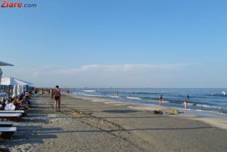 Mii de tone de alge, colectate de pe litoral - care sunt statiunile cele mai afectate