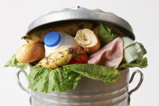 Miliarde de gandaci lupta cu risipa alimentara in China, inainte de a ajunge hrana si ingrediente pentru medicamente