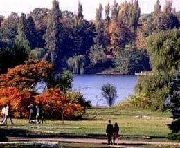 Milioane de euro ingropate in parcurile din Bucuresti