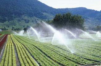 Ministerul Agriculturii lucreaza la o Strategie de Gestionare a Apei si are in vedere o colaborare cu Israelul in acest sens