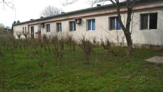 Ministerul Agriculturii vrea sa puna Romania la loc pe harta producatorilor de matase. Dupa 1990, jaful de terenuri a distrus industria