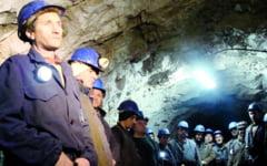 Ministerul Economiei trimite DNA la Mina Baita din Bihor (Video)