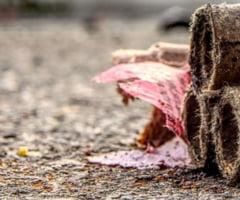 Ministerul Mediului: Amenzi de 168.000 de lei pentru arderile ilegale de deseuri de la Sintesti