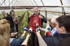 Ministrul Agriculturii spune ca Programul Tomata, promovat de Dragnea, a dus la sute de dosare deschise de DNA