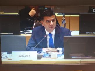 Ministrul Comunicatiilor: Nu cred in programe dedicate diasporei. Romanii se vor intoarce cand va fi mai bine