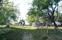 Minori disparuti de la domiciliu din Pancesti, gasiti cu ajutorul cainelui de urma al Politiei