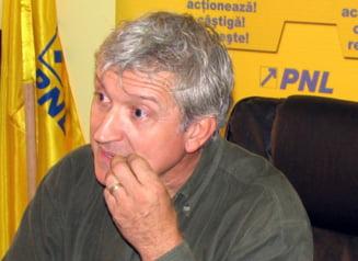 Mircea Diaconu, incompatibil: Eroarea e la Senat, nu la mine