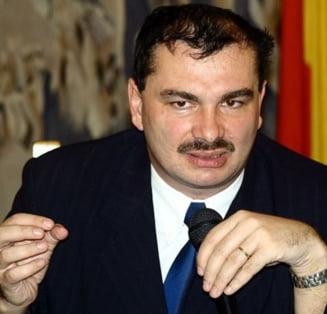 Mircea Miclea: Cartea nationalista jucata de UDMR va legitima nationalismul romanesc