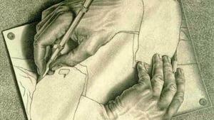Misterele stiintei: De ce majoritatea oamenilor sunt dreptaci?