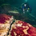 Misterul descifrat în adâcurile lacului Huron: Pământul și-a micșorat viteza de rotație, afectând conținutul de oxigen VIDEO