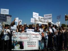 "Miting antimaidanezi: ""Iarta-ne, Ionut!"", ""Nu vrem referendum!"" (Galerie foto)"