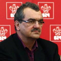Mitrea: Vom vedea daca Antonescu va fi candidatul USL in 2014 - Interviu