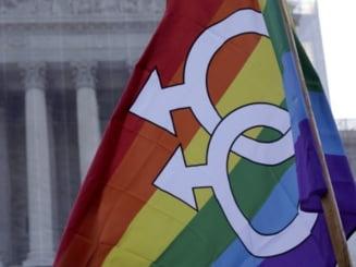 Miturile spulberate ale homosexualitatii (Opinii)
