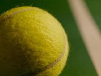 Miza razboiului de la Federatia Romana de Tenis