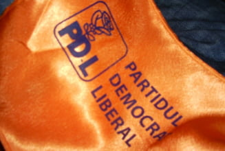 Momentul decisiv al PDL. Si punctul de cotitura (Opinii)
