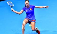 Monica Niculescu a abandonat in turul trei la Miami, dupa un meci maraton in fata campioanei de la US Open