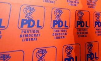 """Motiunea """"reformistilor"""" PDL: Ce contine si cu cine se aliaza"""