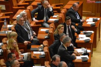 Motiunea simpla pe Schengen, votata marti in Camera Deputatilor