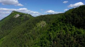 Municipalitatea consulta brasovenii cu privire la alternativele de drumuri forestiere, care sa inlocuiasca drumul Gorita