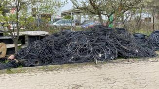 """Muntele de cabluri date jos de pe stalpii din Timisoara. """"Fara spectacol, fara primar cocotat pe scara masinii de interventie"""""""