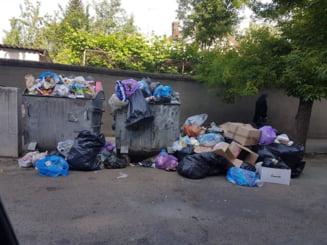Munti de gunoaie pe strazile Aradului si risc de epidemie din cauza mizeriei. Gratiela Gavrilescu trimite Corpul de Control