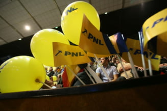 Musuroiul din PNL (Opinii)